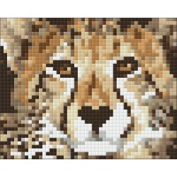 Set PixelHobby Baby Cheetah